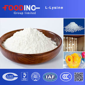 Factory supply l-lysine / l lysine hcl 98% 99% feed grade