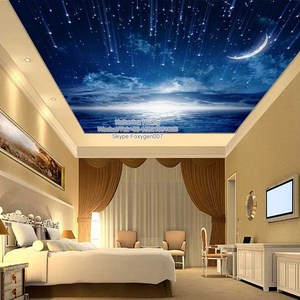 blue sky PVC roof ceiling design for living room