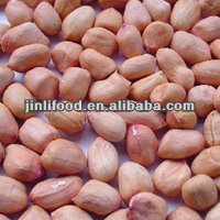 shandong biggest peanuts bulk for sale