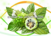top quality Noni or Morinda citrifolia extract with free samples