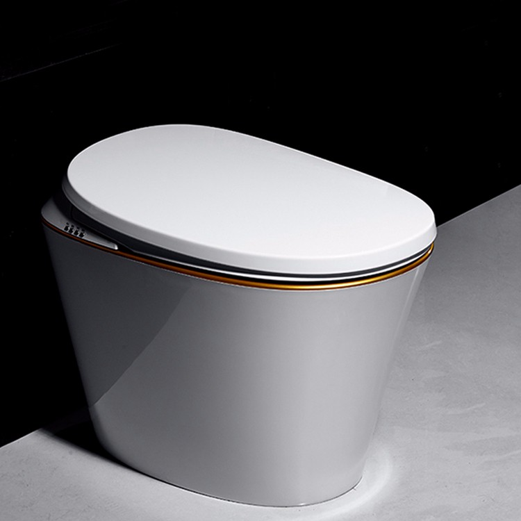 ceramic one piece electric toilet manufacturers