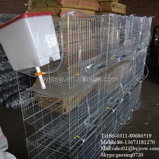 Hot Sale Rabbit Cage in Kenya Farms