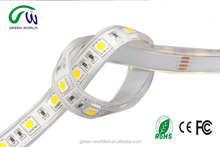 12V 5050SMD waterproof IP68 led strip light for underwater swimming pool
