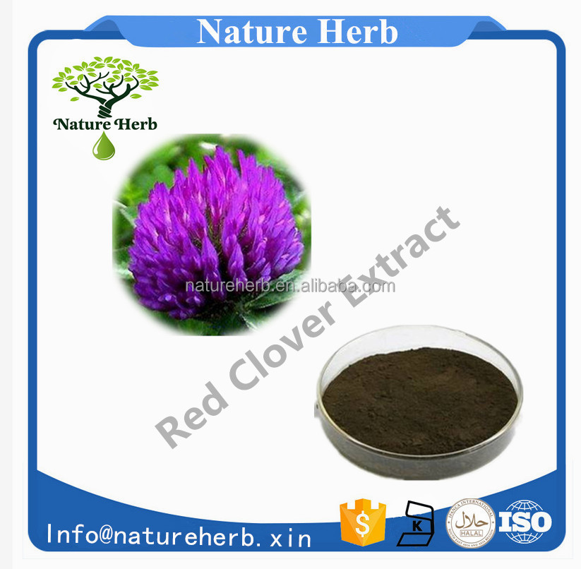 Manufacturer Supply Antibiotic Red Clover Extract 40% Isoflavones