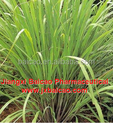 bulk wholesale lemongrass oil price