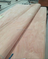 plywood used veneer wood price