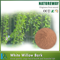 High Quality Low price white willow bark extract