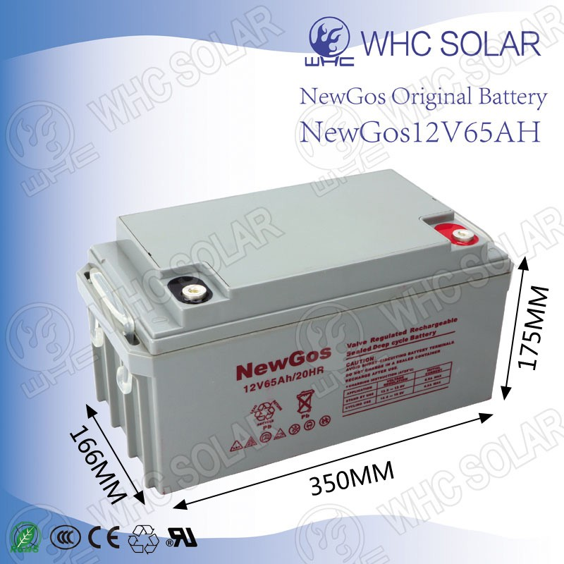 Factory Orders VRLA Deep Cycle 12V Lead Acid Exide Battery Price