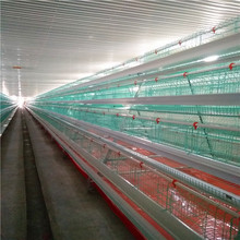 Hot sale commercial poultry farming equipment automatic layer chicken cage