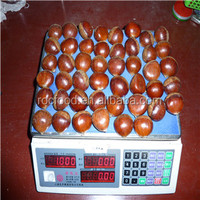 Organic Chinese Fresh Chestnuts best price