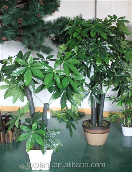 Grossiste Etagere Exterieur Pour Plantes Acheter Les Meilleurs Etagere Exterieur Pour Plantes