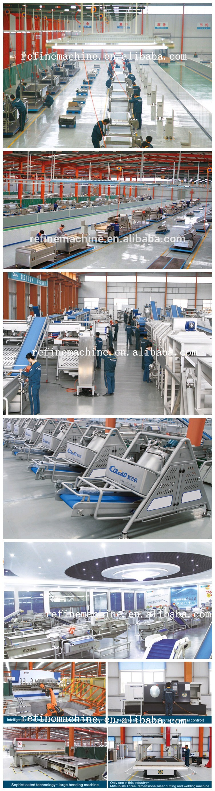 Hot sales commercial leaf vegetable washer from Shandong Colead