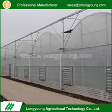 2017 Hot sell custom industrial economical multi span greenhouse