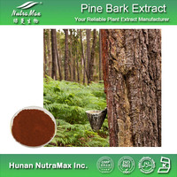 China manufacturer Pine Bark Extract Powder Proanthocyanidins 95%