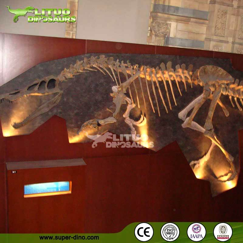 High Simulation Original Size Dinosaur Fossils for Sale