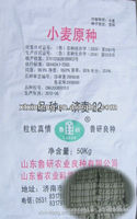 pp woven Waterproof10kg,25kg,50kg sack/bag for flour/sugar/rce/corn/cement/sand