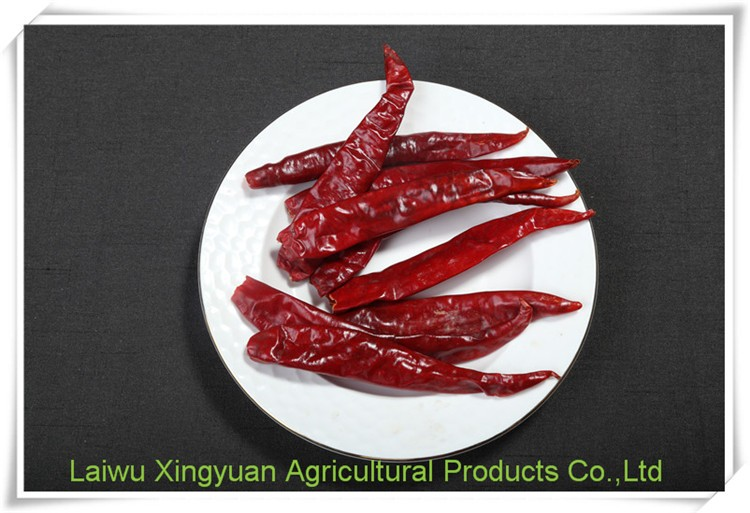 High quality new products organic dried chili pepper er jing tiao