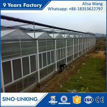 SINOLINK 2017 hot sale hot dipped galvanized with Polycarbonate sheet greenhouse construction cost for commercial