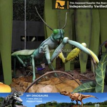 mantis big bugs playground being insects