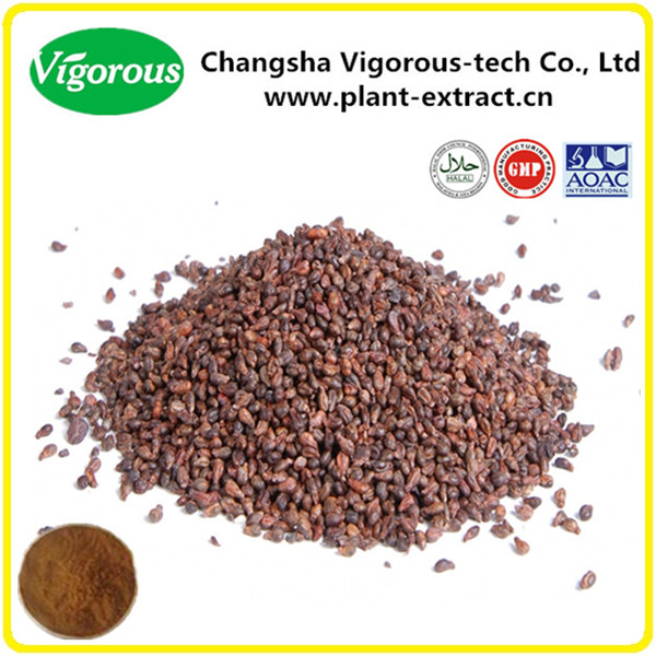 Hot seller grape seed extract/High quality grape seed extract powder 95%OPC;90%Polyphenols;60%-80%Oligomer