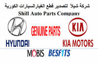 Hyundai & Kia Cars Mobis Genuine Spare Parts