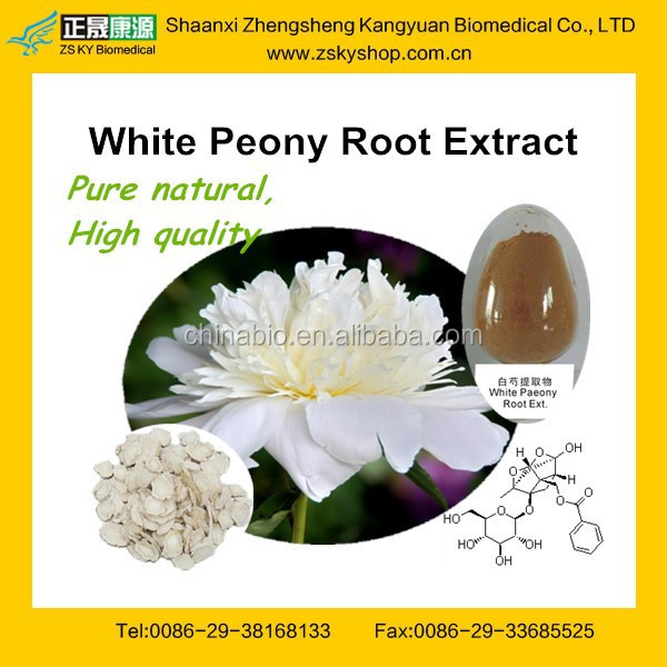 Natural White Peony Root Extract / Paeoniflorin