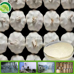 Best seller extract garlic products