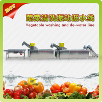 Automatic Vegetable/Fruit Washing and Dewatering Processing Line