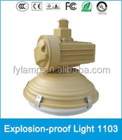 Environmental high factor induction explosion-proof light