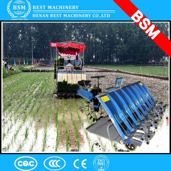 Maymar rice transplanter/kubota rice planting machine