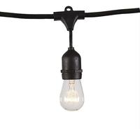 Led festoon lighting outdoor hanging globe clear bulb string lights