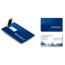 Promotion card usb flash drive 2GB 4GB 8GB 16GB 32GB with logo printed