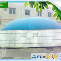 China Home Biogas Digester Plant For