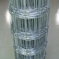 Famous band anti-rust animal wire mesh fence