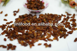 new crop 2013 sultana raisins fruit crop new