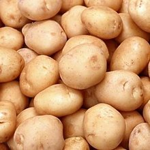 Fresh Potatatoes