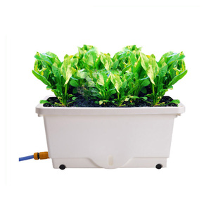 Raised Garden Bed Elevated Flower Vegetable Planter Pot Free Water Garden Planters
