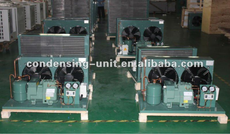 Bitzer 2-stage air cooled condensing unit