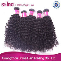 2013 100% Malaysian 20inch human braiding hair virgin malaysian curly hair weave