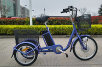 Electric bicycle Tricycle importer electric bicycle small and big Tricycle