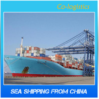 Fast Ocean Freight Forwarder From Shanghai