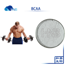 High Quality gain muscle Product Bulk BCAA 2:1:1 Branched Chain Amino Acid