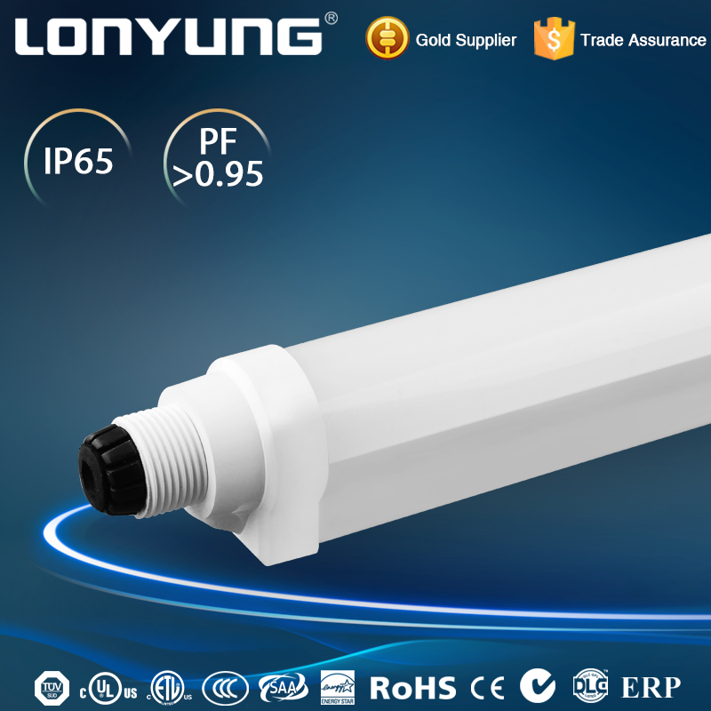 Guangzhou DLC SAA tourist attractions Wholly Plastic IP65 led tube T8 18w