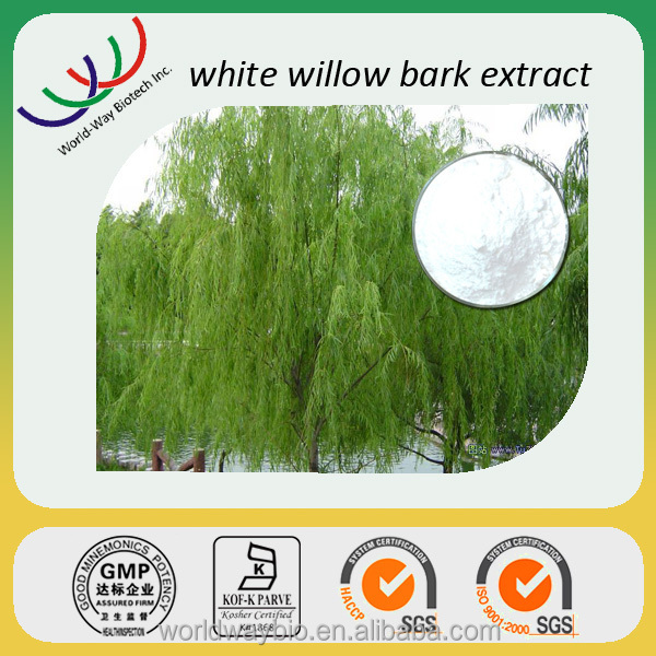 Free testing sample herb medicine ingredients HACCP KOF-K GMP certified anti-rheumatism salicin (white willow bark p.e.)