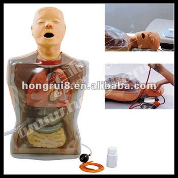 ISO Multifunctional Transparent Gastric Lavage Training model