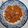 roasted spicy flavor coated peanuts fried 28/32 peanut kernel
