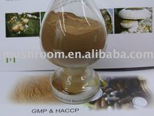Reishi mushroom extract,reishi extract,Ganoderma lucidum extract powder