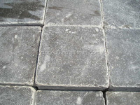 Limestone coping stone blue stones for swimming pool from china