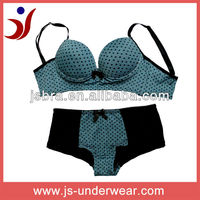 Nylon ladies simple bra & panty set with dots printing(accept OEM)