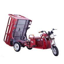 China Gold Supplier Differential Motor Electro-Tricycle